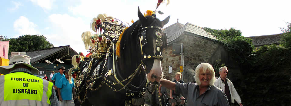 Shire horse at Liskeard Carnival Float